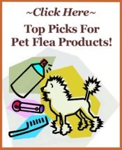 pet flea products