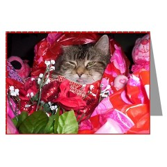 brown maine coon cat valentine card