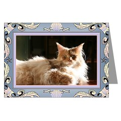 cameo maine coon cat valentine card