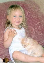 small girl with tiny maine coon kitten on her lap