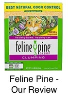 Feline Pine Litter - Our Review