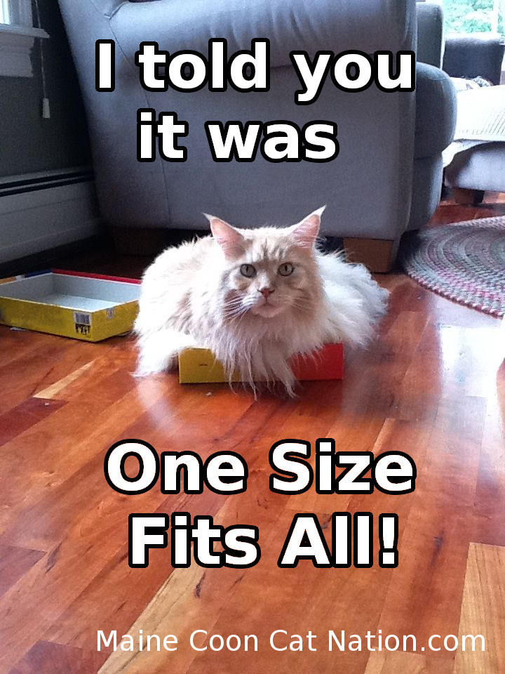 I told you it was one size fits all!