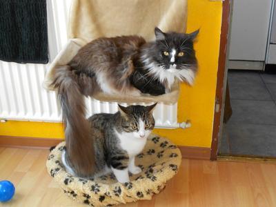 Jonny & Micky