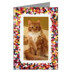 red and white maine coon cat valentine card