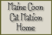 maine coon welcome