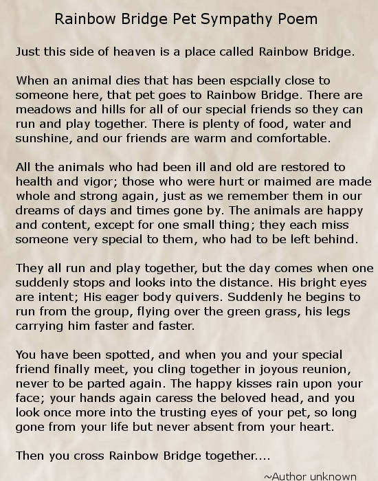 Rainbow Bridge Pet Sympathy Poem