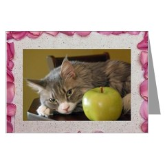 silver maine coon cat valentine card