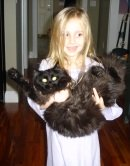 black maine coon cat and young girl