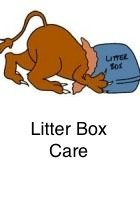 Litter Box Care