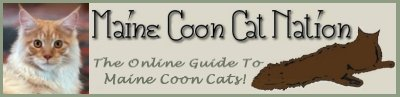 maine coon cat nation banner