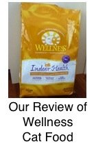 Wellness Food Review