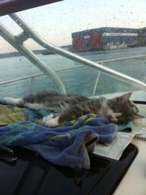 Sleeping on the Boat