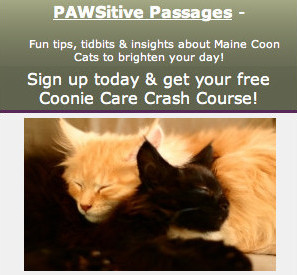 PAWSitive Passages!