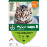 advantage-small-cat