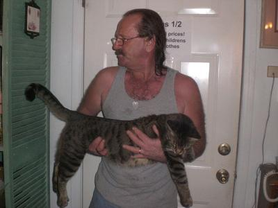 Another of Bob the BIG Tabby and Toney-trying to get a pic with Bob's tail straight out!