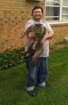 gizmo the maine coon
