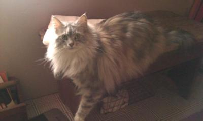 Just relaxin'