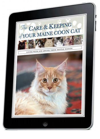 taking care of cats ebook