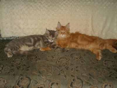 Otto & Chesca