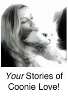 Your Love Stories